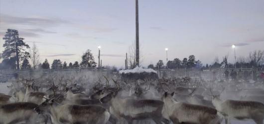 SOUTĚŽ: Kiruna – překrásný nový svět. Vyhrajte vstupenky na pražskou premiéru dokumentu Grety Stocklassy