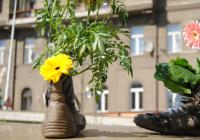 Guerrilla gardening v Praze
