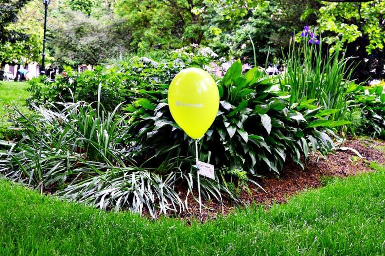 CeliakiFest zpestřil odpoledne v plzeňských parcích. Rozdával balónky i volné vstupenky