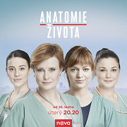 Film: Anatomie života (TV seriál) / Anatomie života