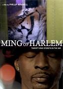 Ming z Harlemu: Jednadvacet pater ve vzduchu