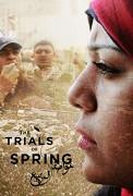 Po arabském jaru