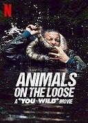 Tvůj souboj s divočinou: Poprask na safari (TV pořad)